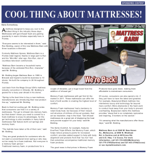 Mattress Barn Native Template_03_27_c